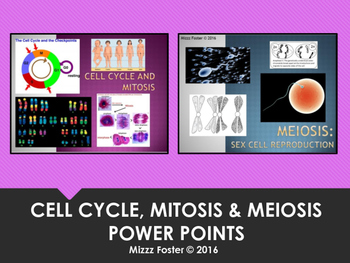 Cell cycle, Mitosis & Meiosis Power Points with Free Venn Diagram