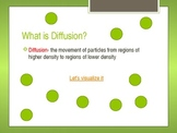 Cell processes-  diffusion and osmosis PowerPoint