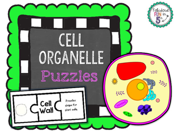 Cells Organelle Sorting Puzzles