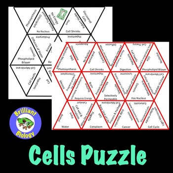 Cells Puzzle Review