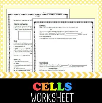 Cells Worksheet