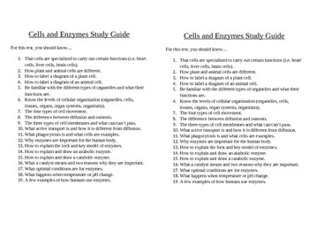 Cells and Enzyme Study Guide