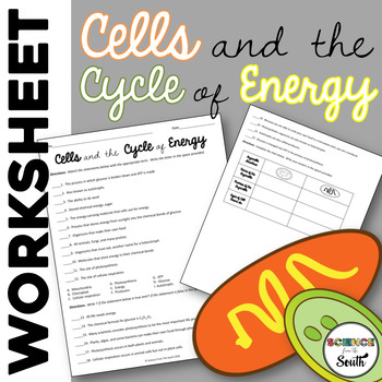Cells and Energy Worksheet Review Photosynthesis and Cellu