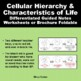 Cellular Hierarchy Differentiated Brochure One Page Foldable