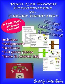 Cellular Processes 3D Photosynthesis vs. Cellular Respiration