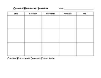 Cellular Respiration Summary Chart