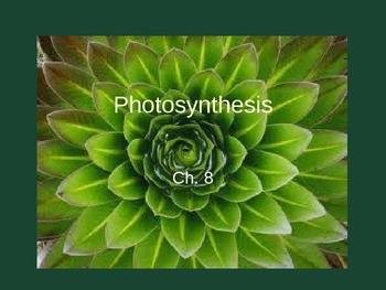 Ch. 8 & 9 Photosynthesis & Respiration Slideshow