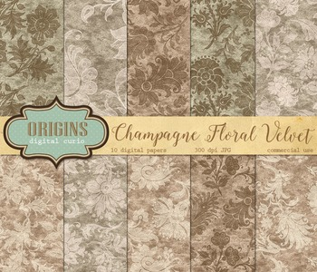 Champagne and Ivory Velvet and White Floral Backgrounds We