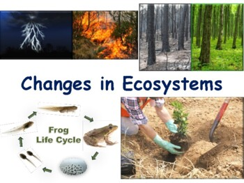 Changes in Ecosystems Lesson & Flashcards- study guide, ex