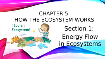 Chapter 5.1 Power Point Energy Flow in Ecosystems