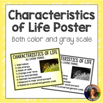 Characteristics of Life Poster