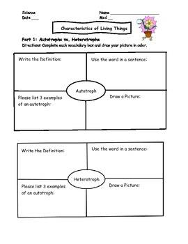 Characteristics of Living Things Worksheet/Homework