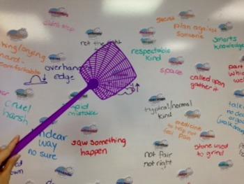 Charlotte's Web Vocabulary Flies