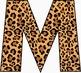 Cheetah Alphabet – Full Set of Characters — Latin, Numbers