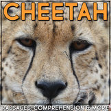 Cheetah: Informational Article, QR Code Research & Fact Sort