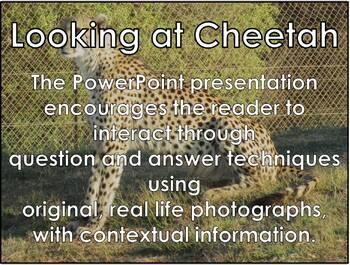 Cheetah - Interactive PowerPoint presentation