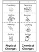 Chemical and Physical Changes Foldable - differentiate the lesson