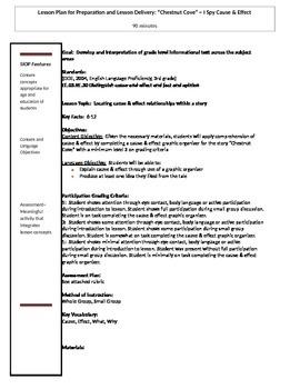 Chestnut Cove ~  I Spy Cause & Effect Activity