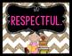 Chevron/Neon Classroom Rules Posters {Responsive Classroom