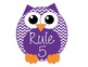 Chevron Owls Class Rules Display