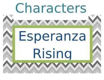Chevron Story Elements Esperanza Rising