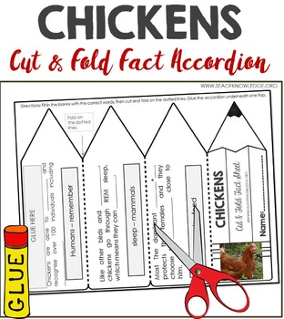 Chicken Facts Foldable Accordion