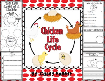 Chicken Life Cycle {Informational Writing Packet}