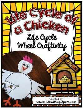 Chicken Life Cycle --- Life Cycle Wheel --- Chicken Life C