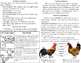 Chickens Minibook- life cycles, adaptations and habitats w