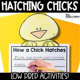 Chicks!  Common Core Activities to Accompany Hatching Chicks
