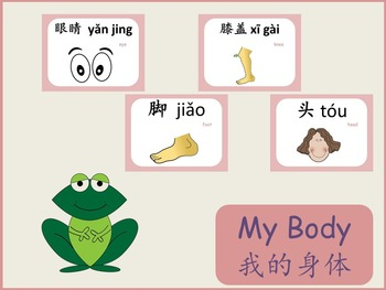 Chinese thematic unit: My body