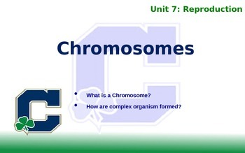 Chromosomes Notes