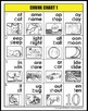 Chunk Chart 1 - rimes/phonograms/word families w photo sup
