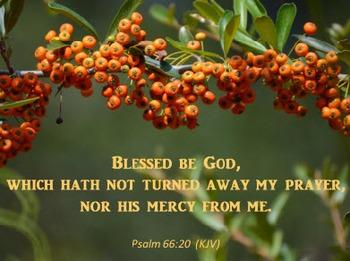Church Set - Psalm 66:20