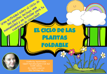 Ciclo de las Plantas! Foldable! CRAFTIVITY!