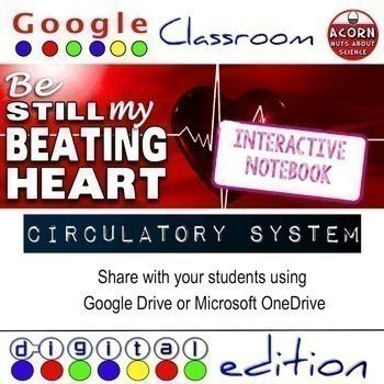 Circulatory System Google Drive Interactive Notebook