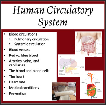 Circulatory System - Biology PowerPoint Lesson, Notes and