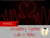 Circulatory System Lab and Notes Teaching Pack
