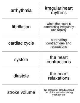 Circulatory System Part II Vocabulary Flash Cards for Anatomy
