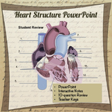 Circulatory System Structure PowerPoint, Mini lesson on He