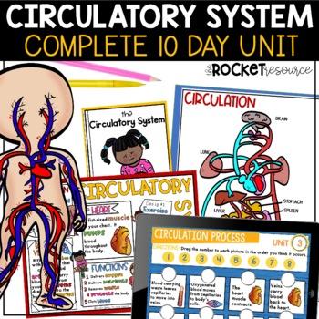 Circulatory System Unit: Heart, blood, blood vessels, diag