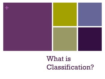 Classification Powerpoint