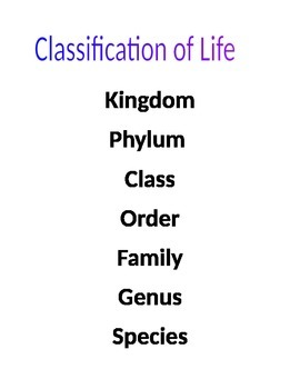 Classification Poster