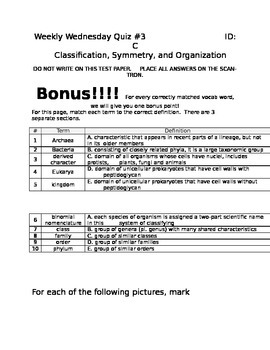 Classification, Symmetry, and Organization Test.