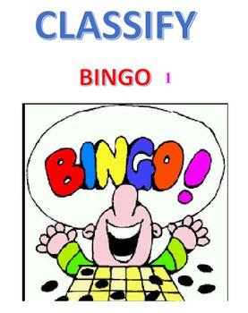Classify Bingo 2