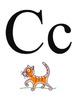 Classroom Color alphabet cards