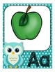 Classroom Decor Owls