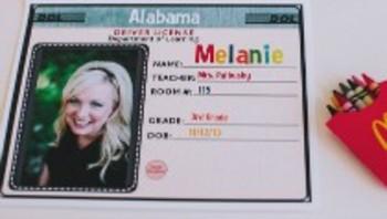 Classroom Decor Road Trip Large Driver's License