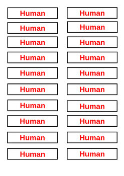Classroom Library Tags - Non Fiction Human Body