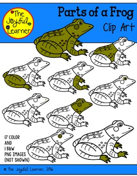 Clip Art: Parts of a Frog (for creating 3-Part Cards & oth